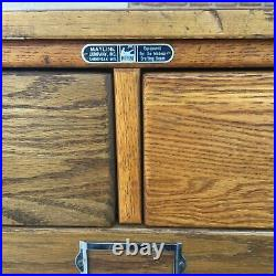 VTG Wood Mayline Oak Flat Files/Map Drawers 4 Sections-20 Dr. Mid Century Modern